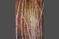2003 - 11 Birch Forest